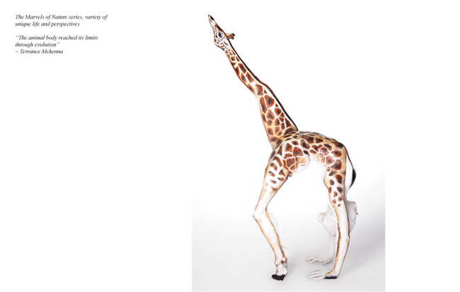 illusiongiraff